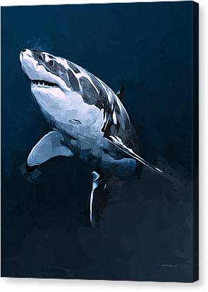 Great White Shark Canvas Print by Scott Wallace