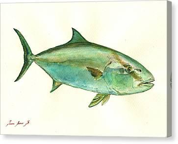 Greater Amberjack Fish Canvas Print