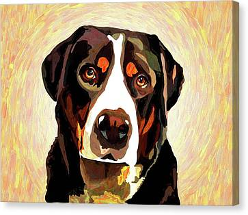 Greater Swiss Mountain Dog Canvas Print by Alexey Bazhan