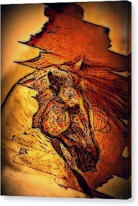 Greek Horse Canvas Print by Paulo Zerbato