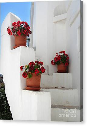 Greek Steps  Canvas Print by Jane Rix