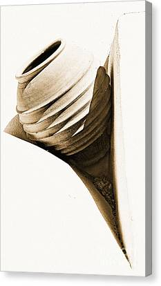 Greek Urn Canvas Print by Meirion Matthias