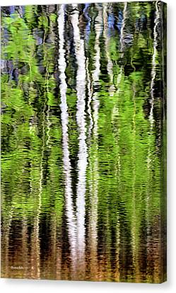 Earth Tones Canvas Print - Green Abstract Tree Reflection by Christina Rollo