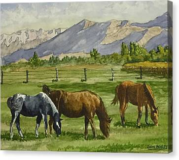 Green Acres Canvas Print by Don Bosley