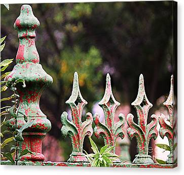 Green And Red Iron Fence Canvas Print by Jeanne  Woods