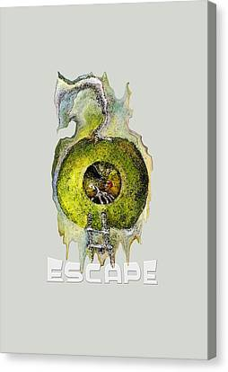 Green Apple Red Apple Still An Apple Escape Canvas Print by Art by Ela