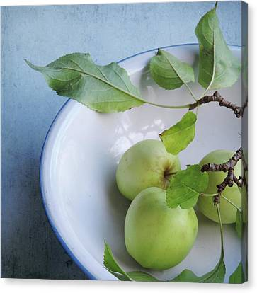 Canvas Print featuring the photograph Green Apples by Sally Banfill