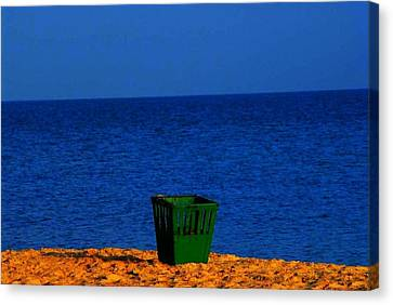 Green Basket Canvas Print by Votus