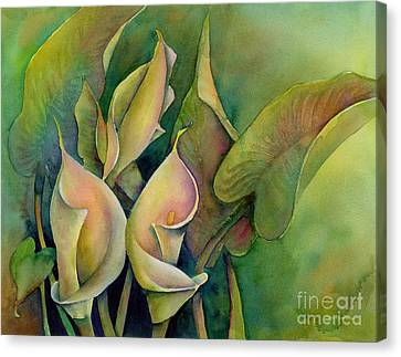 Green Calla Lilies Canvas Print by Amy Kirkpatrick