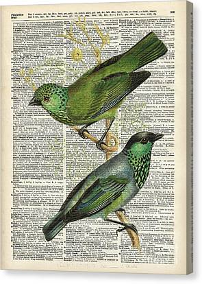 Green Canary Birds Couple Over Vintage Dictionary Book Page Canvas Print