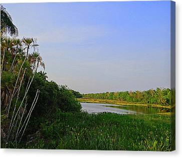 Canvas Print featuring the photograph Green Cay Landscape Photography by David Mckinney