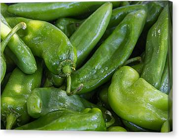 Green Chile Peppers Canvas Print by James BO  Insogna