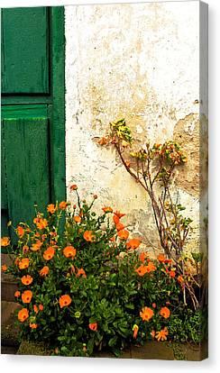 Green Door - Orange Flowers Canvas Print by Georgia Nick