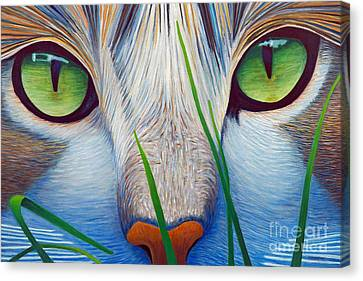 Green Eyes Canvas Print by Brian  Commerford