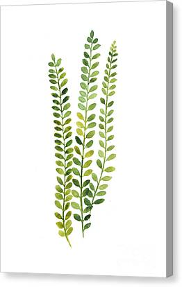 Green Fern Watercolor Minimalist Painting Canvas Print by Joanna Szmerdt