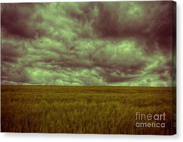 Canvas Print featuring the photograph Green Fields 3 by Douglas Barnard