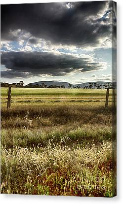 Canvas Print featuring the photograph Green Fields 6 by Douglas Barnard
