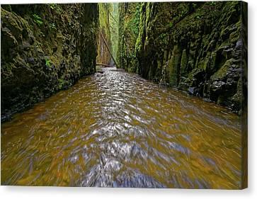Green Flow Canvas Print by Jonathan Davison