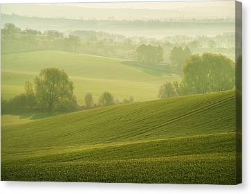 Canvas Print featuring the photograph Green Foggy Waves by Jenny Rainbow