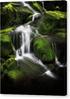 Falling Water Canvas Print - Green Glow by Bill Wakeley