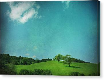 Green Grass Blue Sky Canvas Print by Laurie Search