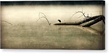 Green Heron In Dawn Mist Canvas Print by Kathy Barney