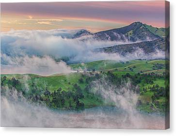 Brentwood Canvas Print - Green Hills And Fog At Sunrise by Marc Crumpler