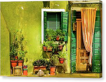Green House Burano Italy Canvas Print by Xavier Cardell