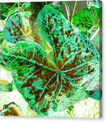 Green Leafmania 2 Canvas Print by Marianne Dow