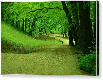 Green Magic Canvas Print