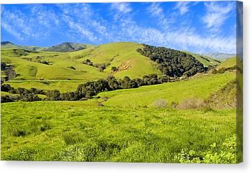 Green Meadow Santa Ynez Valley Ca Canvas Print by Eyal Nahmias