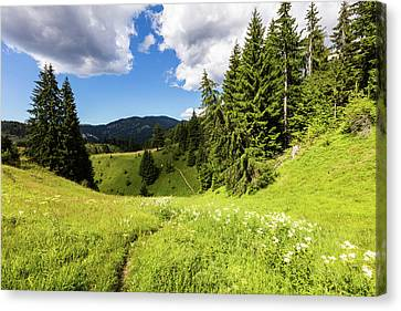 Green Mountain Canvas Print by Evgeni Dinev