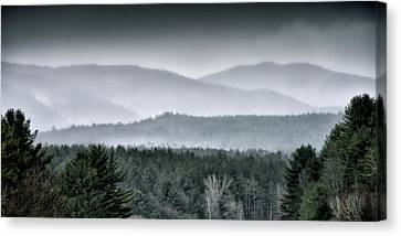 Green Mountain National Forest - Vermont Canvas Print by Brendan Reals