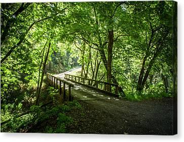 Green Nature Bridge Canvas Print