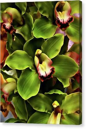 Green Orchid Wall Art Canvas Print