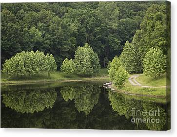 Green Reflections Canvas Print