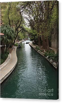 Green San Antonio River Canvas Print by Carol Groenen