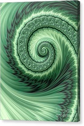 Celestial Canvas Print - Green Shell by John Edwards