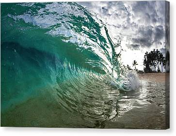 Green Shimmer Canvas Print by Sean Davey