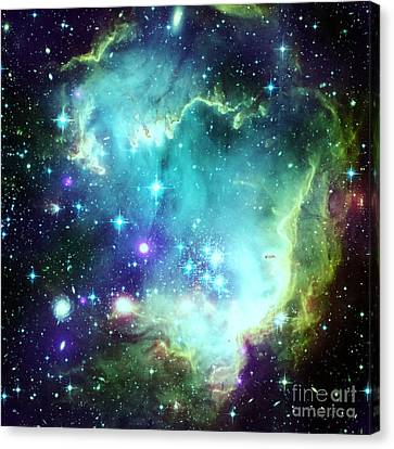 Constellations Canvas Print - Green Space by Johari Smith