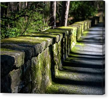 Canvas Print featuring the photograph Green Stone Wall by James Barber