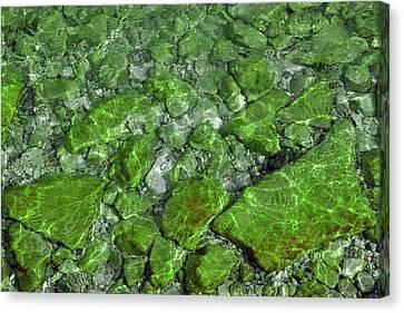 Canvas Print featuring the photograph Green Stone Waters by LeeAnn McLaneGoetz McLaneGoetzStudioLLCcom