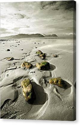 Green Stones On A North Wales Beach Canvas Print by Mal Bray