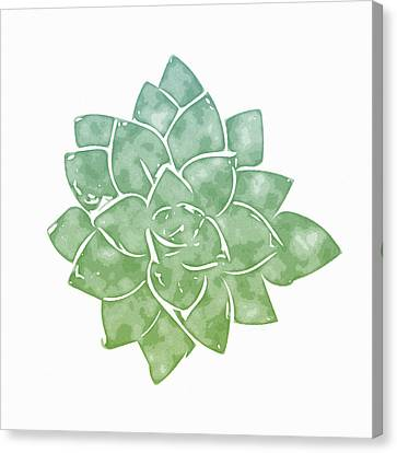 Green Succulent 1- Art By Linda Woods Canvas Print