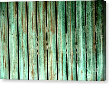 Green Texture Fence Canvas Print by Mike Lindwasser Photography