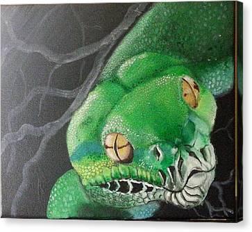Green Tree Python Canvas Print by Judit Szalanczi