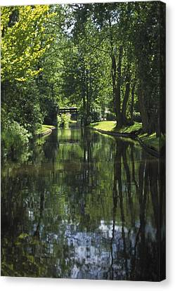 Green Trees Reflected In River Water Canvas Print