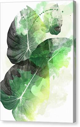 Green Tropical Canvas Print by Mark Ashkenazi