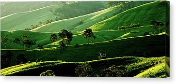 Green Valley Canvas Print by Az Jackson