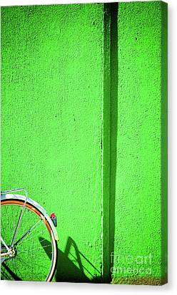 Green Wall And Bicycle Wheel Canvas Print